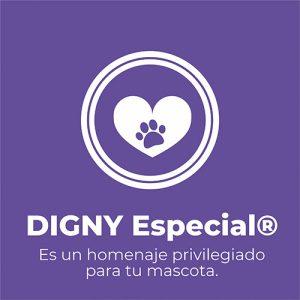 Digny Especial